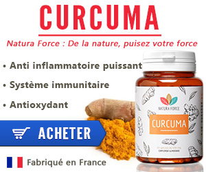 curcuma circulation sanguine