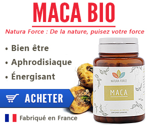 mr ginseng maca